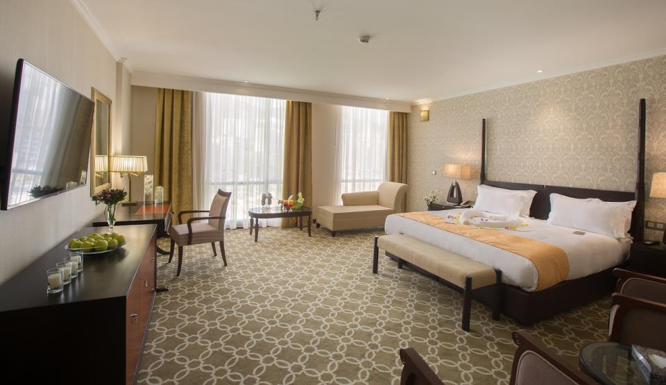 Espinas Hotel - Tehran - Room (8).jpg