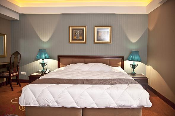 Shiraz Hotel - Shiraz - Room  (4).jpg