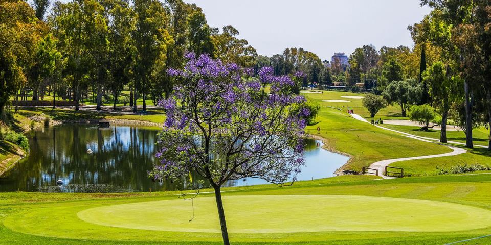 Sol Marbella Estepona Atalaya Park 4*