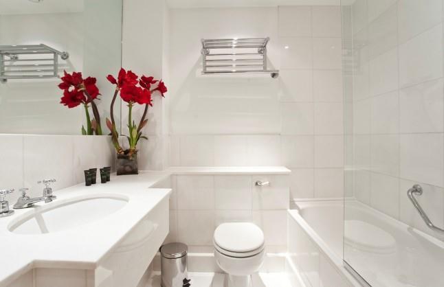 Westminster Apartments - Bathroom