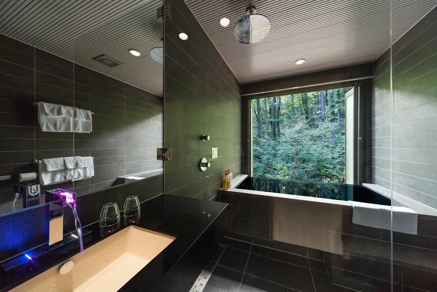 Hakuba Accommodation Phoenix One 18