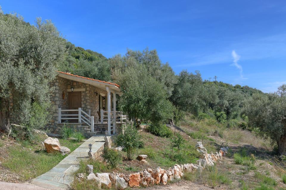 Villa Ledaki